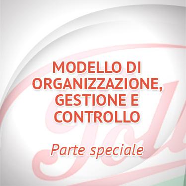 Modello di Organizzazione, Gestione e Controllo - Parte speciale